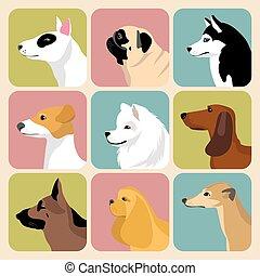 wektor, komplet, od, różny, psy, ikony, w, modny, płaski, style.