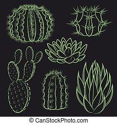 wektor, komplet, odizolowany, cactus.