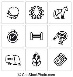 wektor, komplet, sport, jeździec, ikony