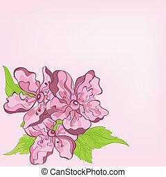 wektor, kwiat, sprytny, karta