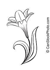 wektor, lilia, kwiat, ikona