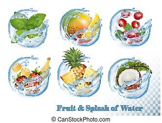 wektor, mennica, komplet, mangowiec, cielna, zbiór, woda, owoc, bryzg, icons., truskawka, coconut., crawberry, banan
