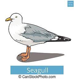 wektor, oświatowy, seagull, gra, uczyć się, ptaszki