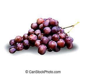 wektor, odizolowany, winogrona, white.