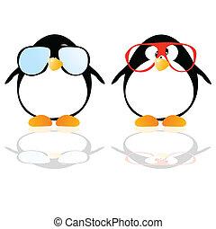 wektor, pingwiny, okulary