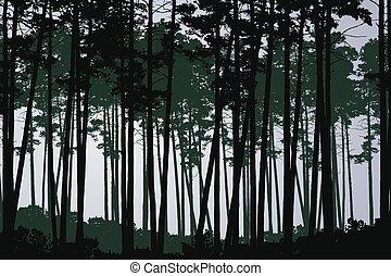 wektor, pod, pochmurne niebo, drzewa, iglasty, ilustracja, las, głęboki, wysoki, zielony, szary