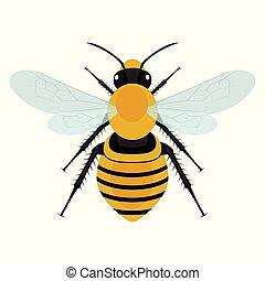 wektor, projektować, pszczoła, ilustracja