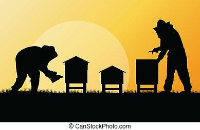 wektor, pszczelarz, pasieka, tło, pracujący