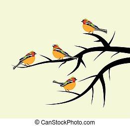 wektor, ptaszki, na, gałęzie drzewa