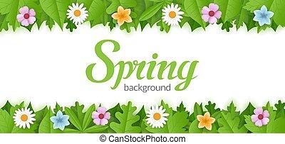wektor, rozkwiecony, wiosna, tło, kwiaty, zieleń foliage