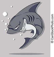 wektor, shark.