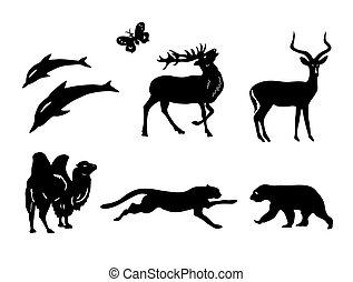 wektor, -, sylwetka, komplet, zwierzęta