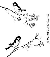 wektor, sylwetka, od, przedimek określony przed rzeczownikami, ptak, na, gałąź, drzewo