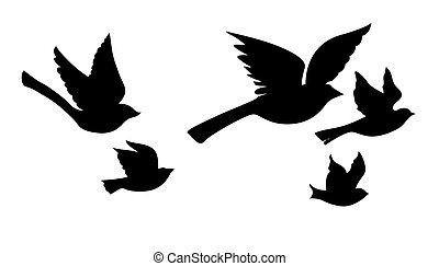 wektor, sylwetka, przelotny, ptaszki, na białym, tło