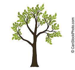wektor, symbol, drzewo., zielony, natura
