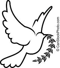 wektor, symbol, od, gołębica, oliwna gałąź