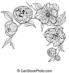 wektor, tło, z, kwiaty