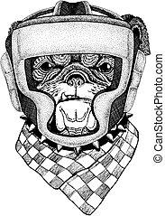 wektor, t-shirt., wojownik, tło., odizolowany, ilustracja, sport, osoba, bokser, stosowność, animal., biały, silny