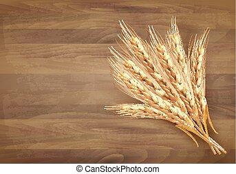 wektor, wheat., ilustracja, kłosie