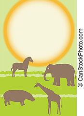wektor, zwierzęta, karta, afrykanin