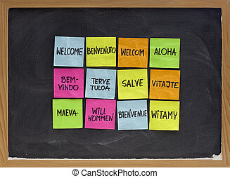 welcome in a dozen of languages (Finnish, Slovak, Tahitian, Italian, Latin, English, German, Hawaian, Portuguese, Dutch, Polish, French) - array of colorful sticky notes on blackboard with white chalk texture