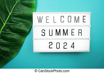 Welcome Summer 2024 word in light box