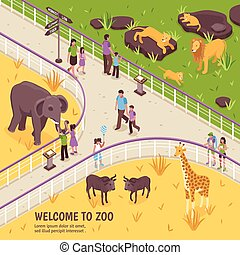 Welcome To Zoo Composition