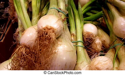 Well cropped eco spring onions - Well cropped spring onions...