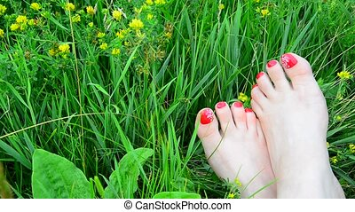 Well-groomed female legs with a red pedicure on green grass