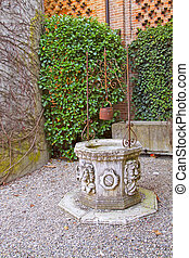 Old well in a garden, with big ivy wall