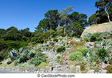 Wellington Botanic Gardens in Wellington New Zealand.