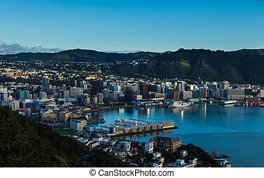 Wellington City - The city of Wellington with it's blue ...