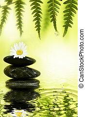 wellness, リラックス, 自然