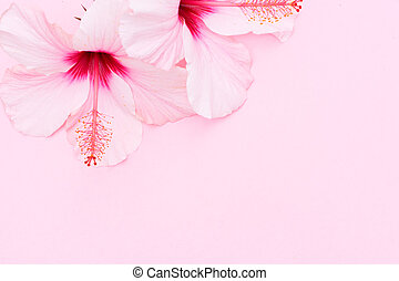 Wellness background with hibiscus flower