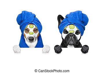 wellness beauty mask row of dogs