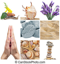 wellness collage - a collage of nine pictures of different...