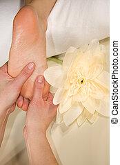 wellness composition - foot reflex zone massage - a wellness...