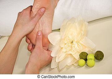 wellness composition - foot reflex zone massage - a wellness...