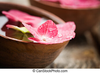 Detail of hortensia petals floating on bowl of water