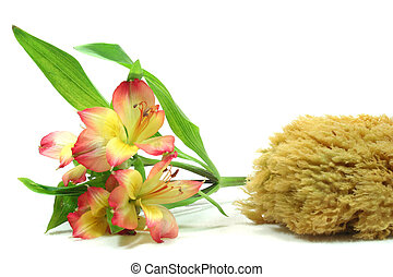 Wellness - Personal Care - Wellness - flower and candle on a...