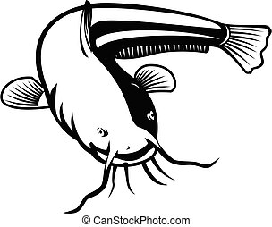 wels, retro, natation, noir, blanc, woodcut, ou, poisson-chat, sheatfish