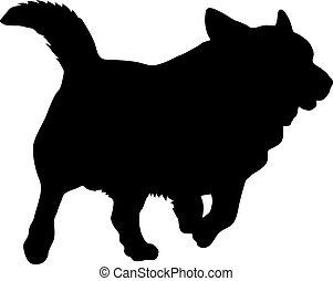 Welsh Corgi dog silhouette on a white background