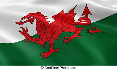 Welsh flag in the wind. Part of a series.