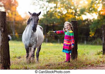 wenig, fütterung, pferd, m�dchen