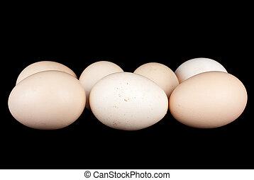 wenige, huhn eier