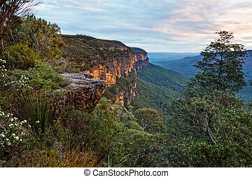 Views from the cliffs to Jamison Valley through one of the gulliies on the escarpment