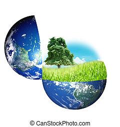 wereld, natuur, concept