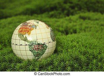 wereld, sparen