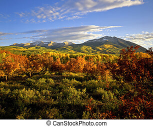 West Beckwith Mountain in the Gunnison National Forest of ...