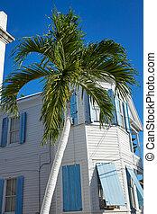 west, florida, downtown, huisen, straat, klee